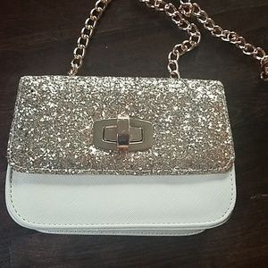 Small express bag purse